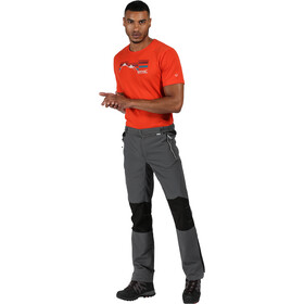 Regatta Sungari II Pantalon Homme, magnet/black